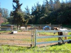 tustin rd ranch