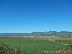 pajaro valley