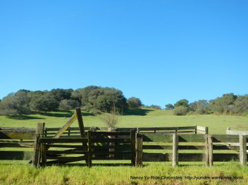 carr rd ranch