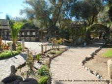 outdoor garden area