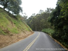 McEwen Rd-steep climb