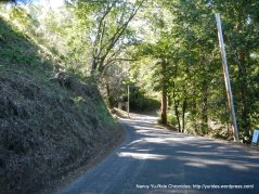 happy valley rd-steep climb