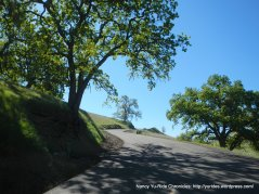 north gate rd-steep section