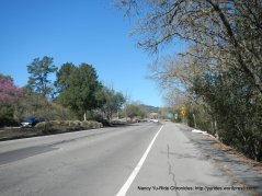 mt diablo blvd