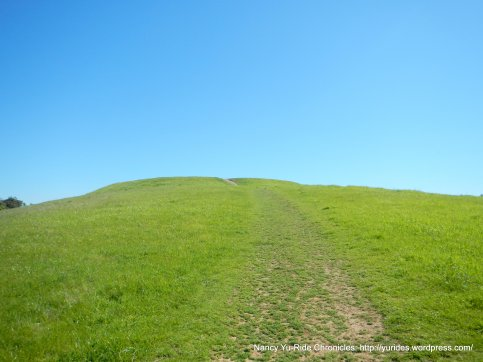 unmarked path-top of ridge