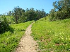 retrace steps