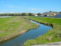 pacheco creek wetland