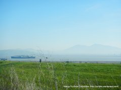 suisun bay views-mothball fleet-mt diablo