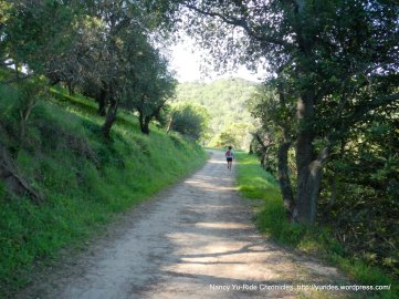 toyon trail