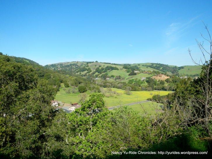 brions hills