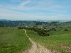 briones crest trail-alhambra valley views