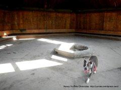 maud whalen picnic areamaud whalen picnic area