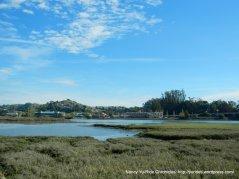 bothin marshes