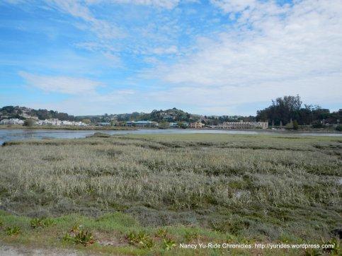 bothin preserve marshes