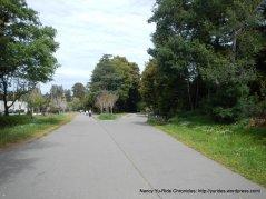 corte madera larkspur path