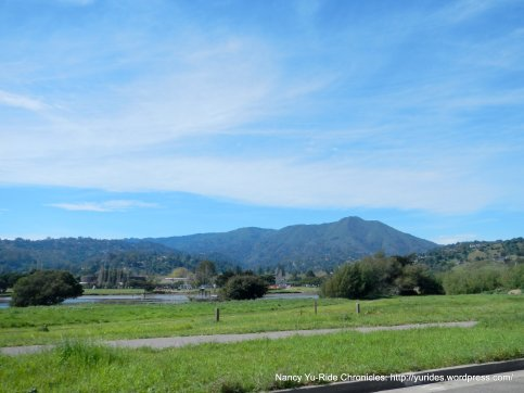 view of mt tam