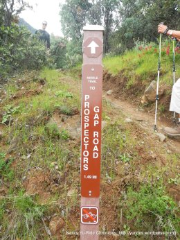 left-middle trail