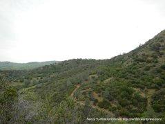 middle trail-diablo view