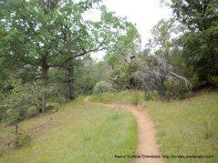wassermann trail
