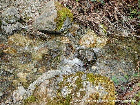 donner creek