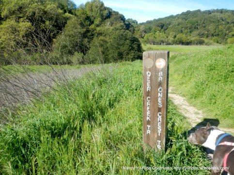 to briones crest trail
