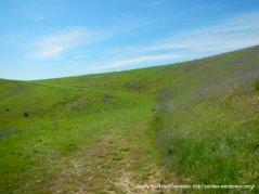periera trail