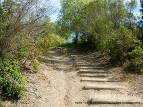 trail to staging area