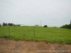 north gate rd-arroyo del cerro ranch