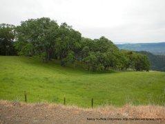 diablo landscape