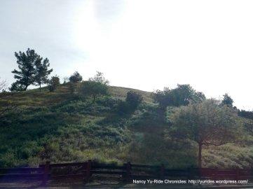 muir ridge