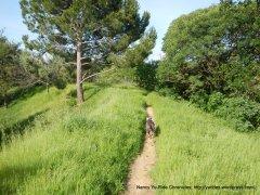 muir ridge path