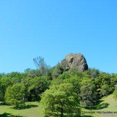 raney rock