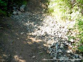 back creek trail