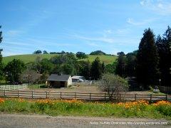 morgan territory rd ranch