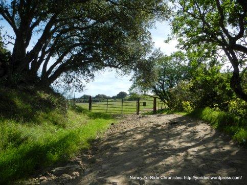 old briones rd trail gate