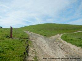 old briones rd trail split