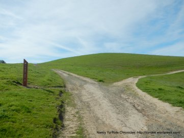 old briones rd trail split