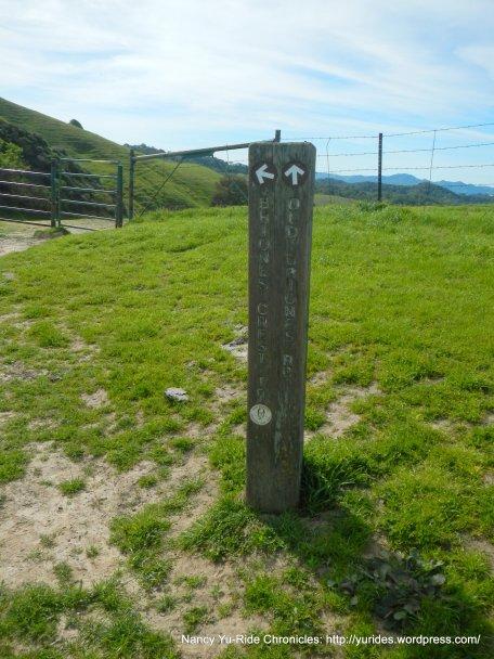 stay on old briones rd trail thru gate