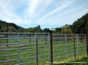 valley cattle pen