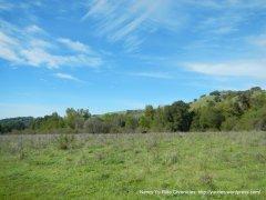 crescent ridge trail-archery range meadow