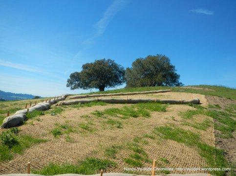 Briones Crest Trail