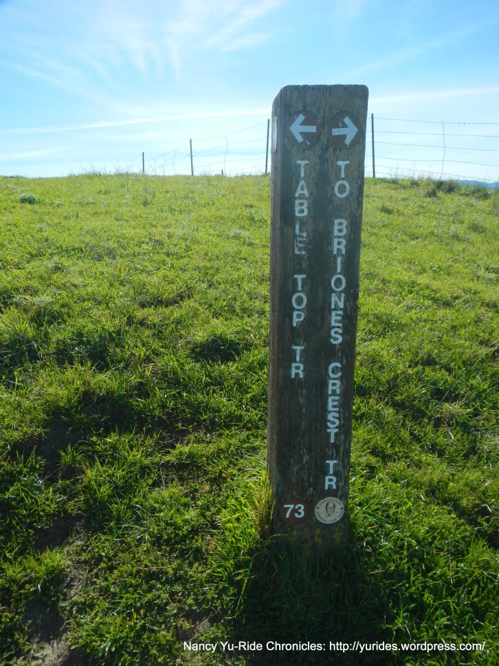 continue on Briones Crest Trail