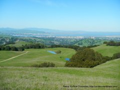 ridge top trail views