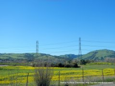 sunol valley