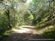 yerba buena trail