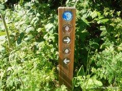 edwards loop trail