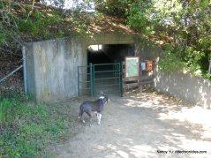 tunnel cross under cummings skywy
