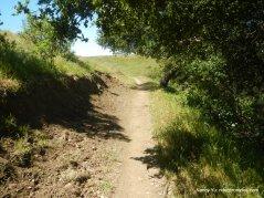 soaring eagle trail