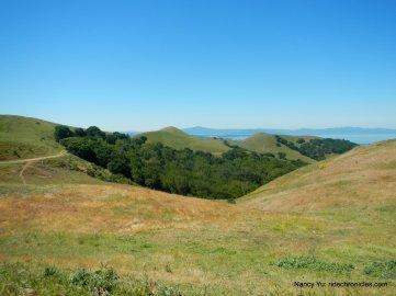 crockett hills