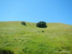 big valley trail